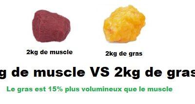 Volume masse musculaire et masse graisseuse : Différence entre le muscle et le gras - Quel est le plus lourd ?